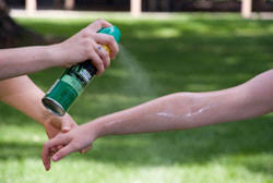 Person spraying insect repellent on someone else's arm